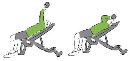 Isolationsübungen für Deinen Muskelaufbau - French Press aka Nosebreaker